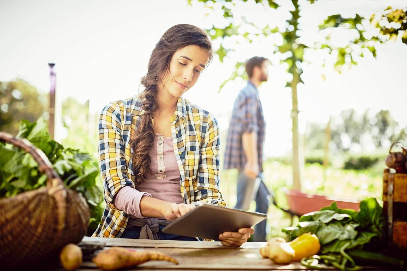 SproutsIO, le jardin connecté qui permet de cultiver des légumes sans terre.