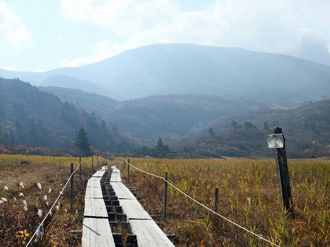 日本有数の絶景の宝庫 宮城県の人気観光スポットランキングtop15 Retrip リトリップ 旅 絶景 観光