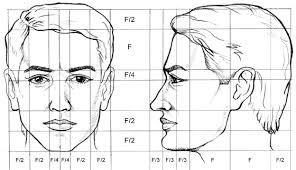 Rostro Humano Como Dibujar Un Hombre Facil Paso A Paso Proporciones Del Rostro Humano Buscar Con Google Dibujos De