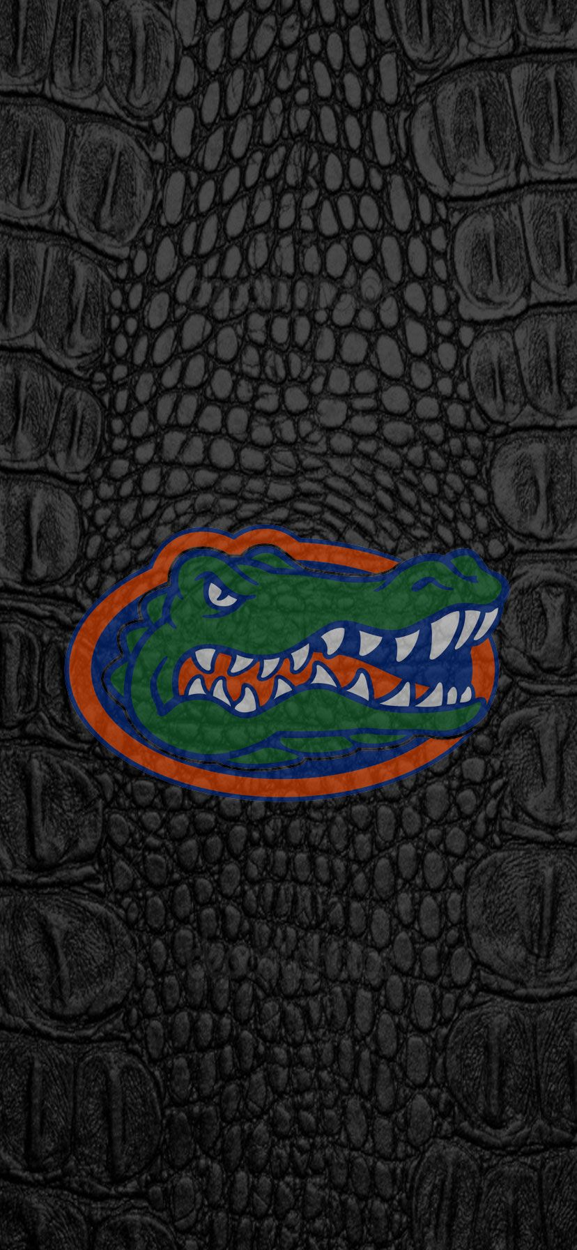 Pin by Karen Cabanas Voss on Florida Gators iPhone XR