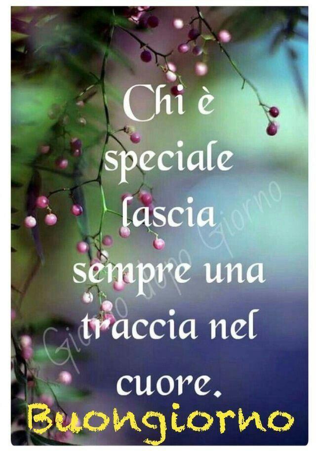 Chi è speciale lascia sempre  una traccia nel cuore...
