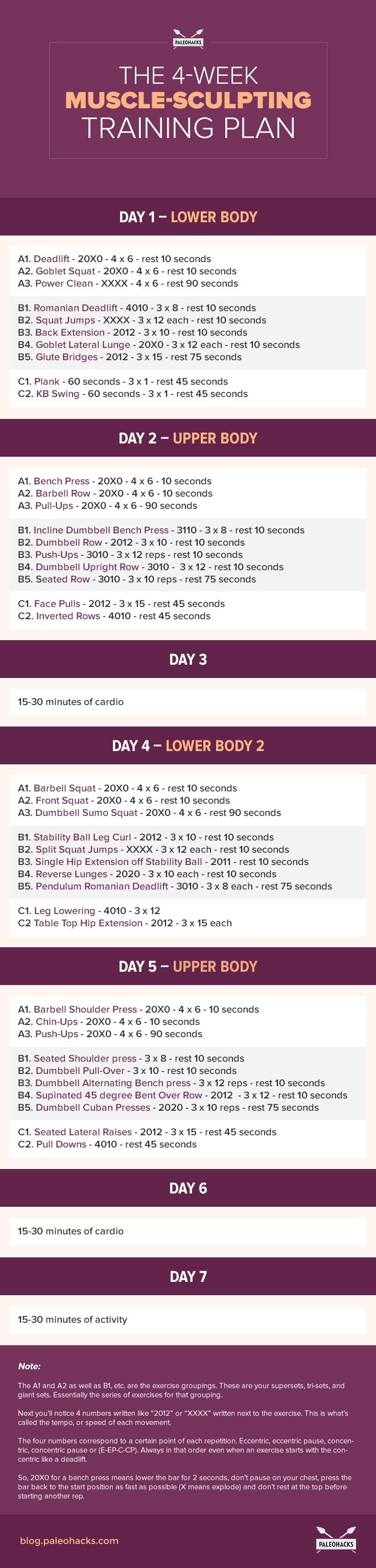 8 week muscle building workout plan pdf