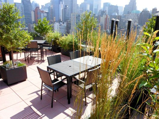 433 West 34th Roof Deck Done New Flatbush Affordable Housing Green Roof House Roof Design Roof Deck
