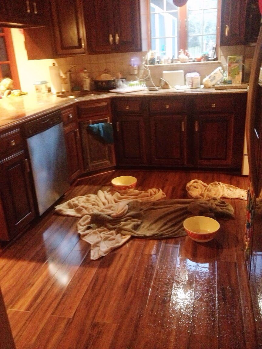 Our Kitchen Flooded Due To A 2nd Floor Bathroom Leak In August 2013 It Took 5 Months To Begin The Redo It Had To Be Gutted Because T Kitchen 2nd Floor Home