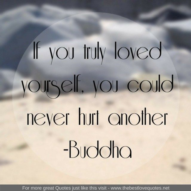 Buddha Love Quotes Interesting If You Truly Loved Yourself You Could Never Hurt Another Buddha Www . Design Ideas