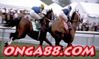 꽁머니 ❄️❄️❄️ ONGA88.COM ❄️❄️❄️ 꽁머니: 꽁머니♥️♥️♥️  ONGA88.COM ♥️♥️♥️꽁머니