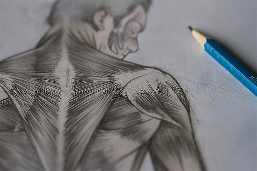 Sébastien del Grosso studiert Muskeln am eigenen Körper | KlonBlog