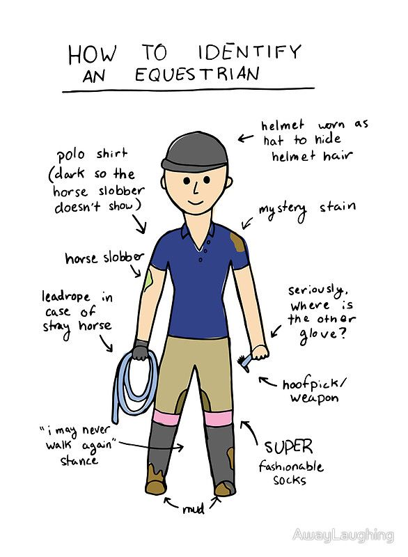 How To Identify An Equestrian By Awaylaughing Repinned With Gratitude By Dressage Waikato Horse Quotes Funny Horse Quotes Funny Horses