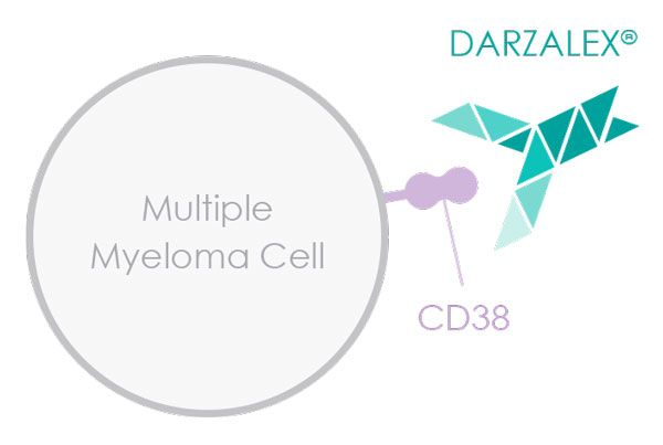 FDA Approves New Use for Daratumumab in Multiple Myeloma