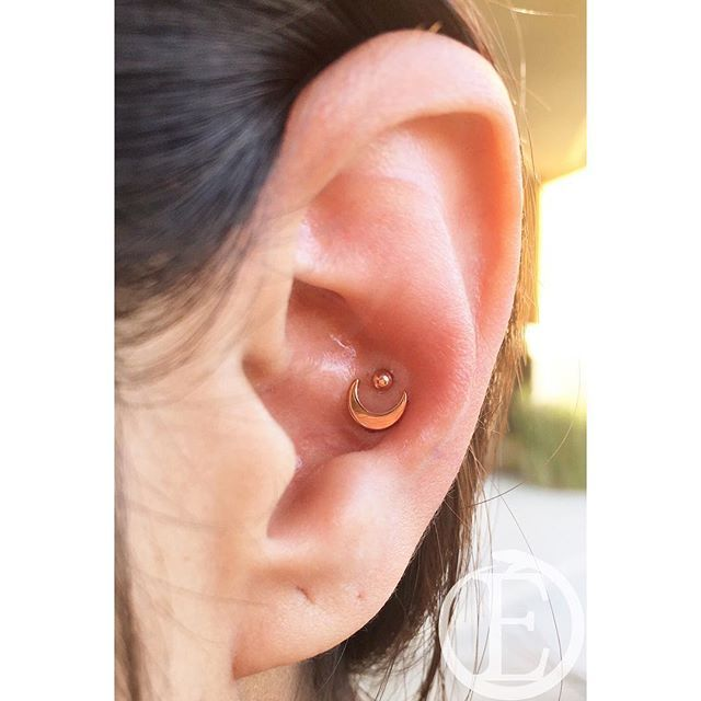 Fresh Double Conch Piercing With An 18kt Rose Gold Crescent Moon And