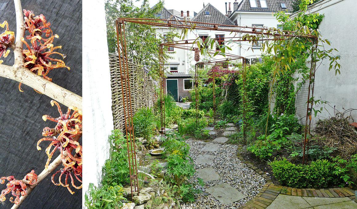 Tuinontwerpen stadstuinen pinterest tuinontwerpen for Tuinontwerpen kleine tuin foto s