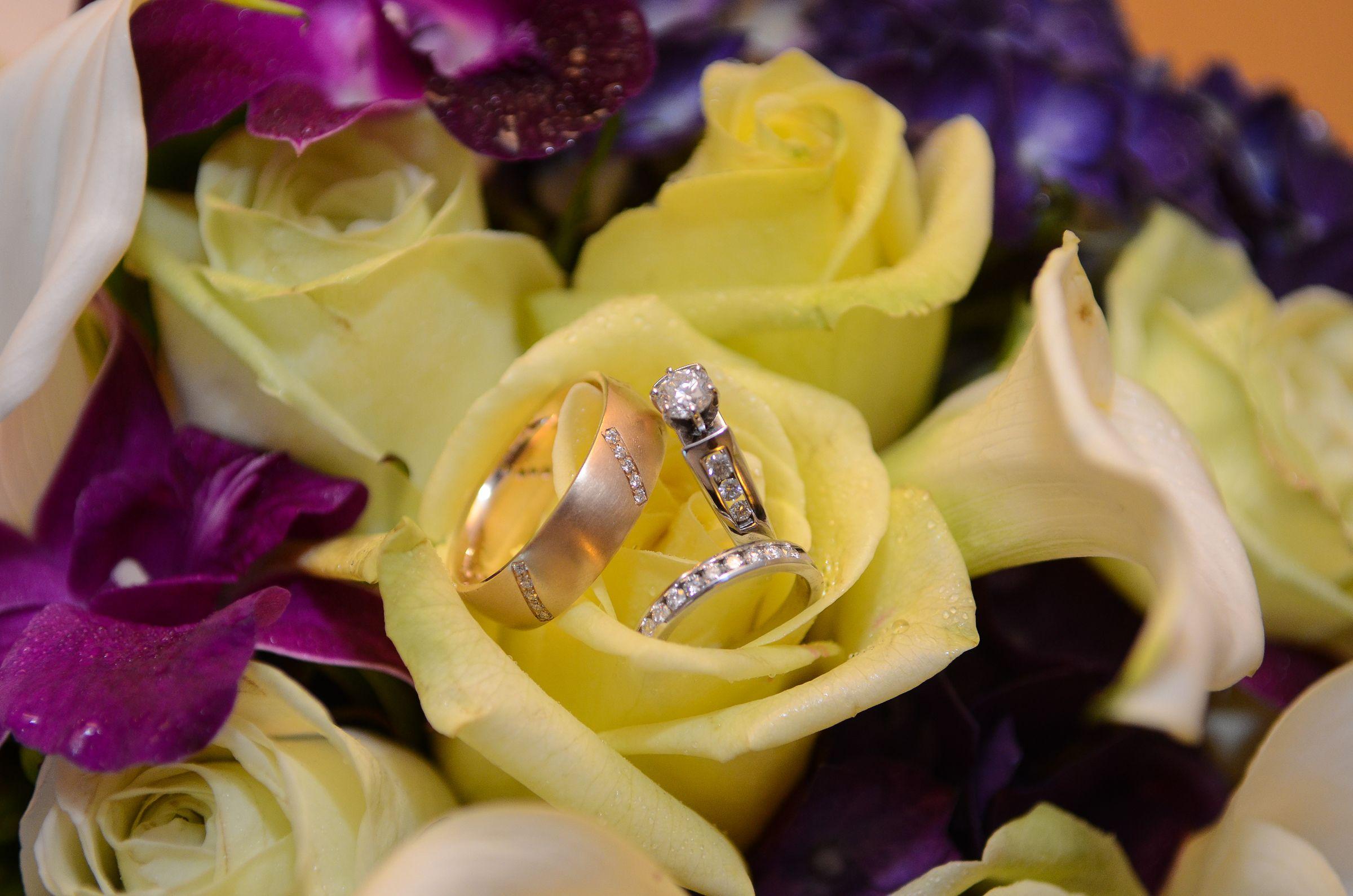 #Rings #weddings http://celebrationsoftampabay.com/