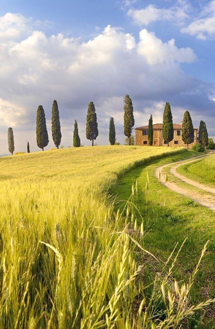 Photo of Florence Italy Vacation Package Deals