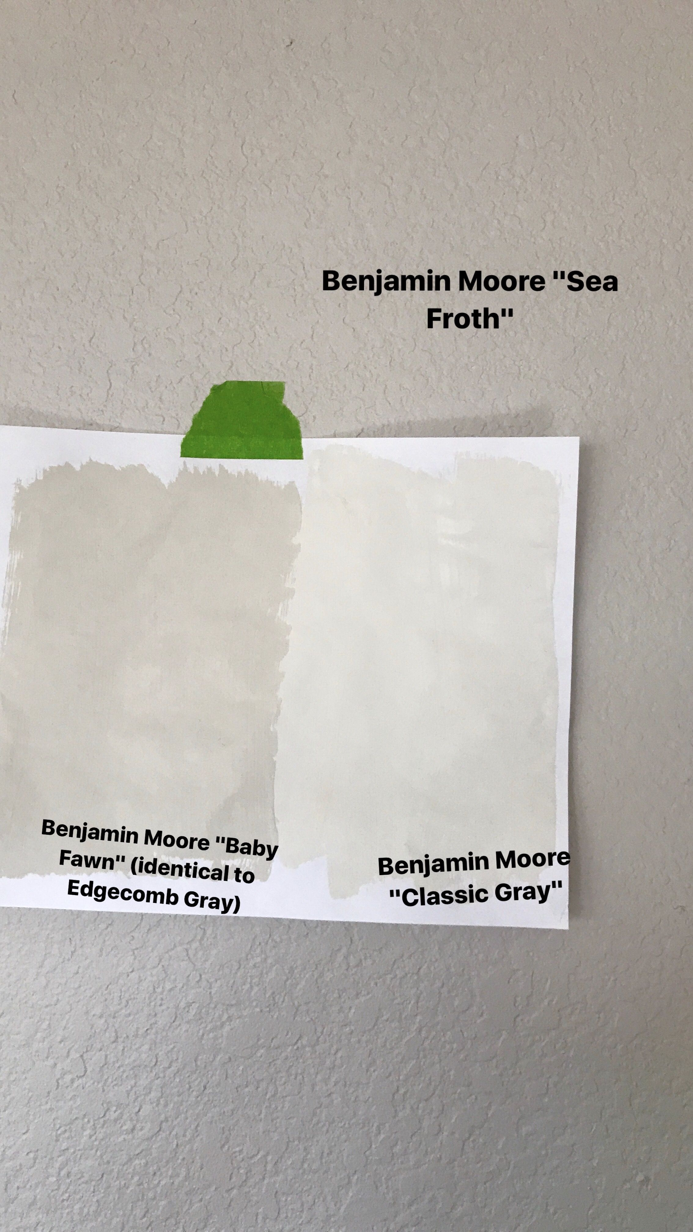 Benjamin Moore Sea Froth Vs Clic Gray Baby Fawn Edgecomb Paint