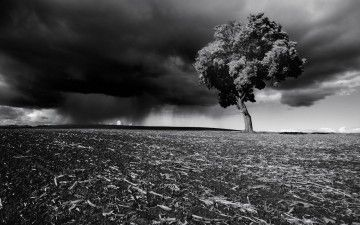 5 Tips to Protect Property + Finances from Natural Disasters The Money Coach doles out advice for how to deal with your financial information in unforeseen emergency situations.