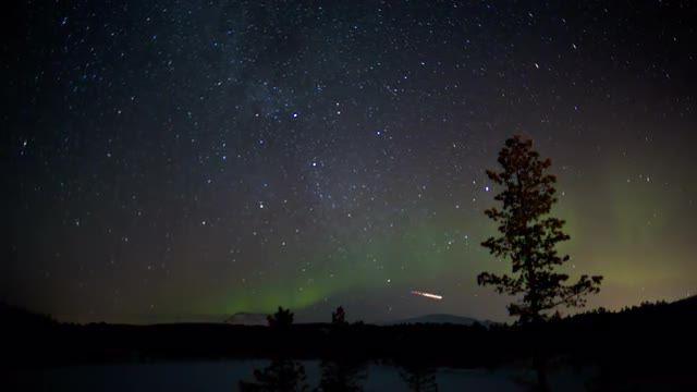 summer night sky stars - Google Search | Night sky stars