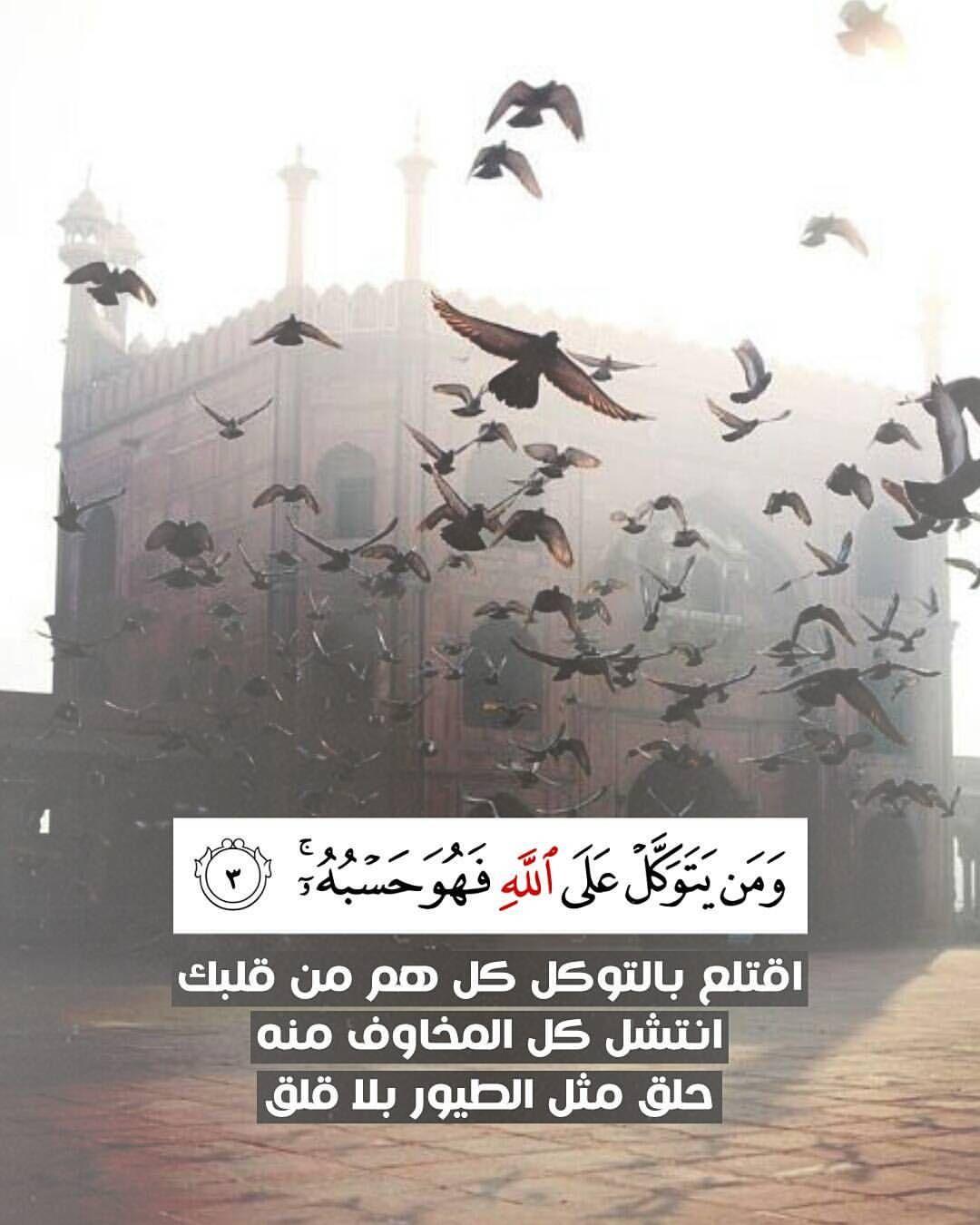 ومن يتوكل على الله فهو حسبه اقتلع بالتوكل كل هم من قلبك انتشل كل المخاوف منه حلق مثل الطيور بلا قلق Beautiful Quran Quotes Quran Verses Quran