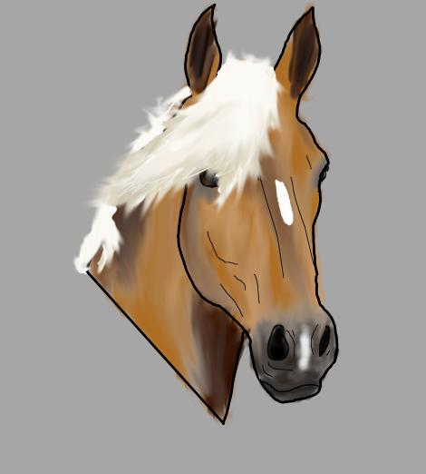 haflinger head drawn myself digital gimp zeichnen vektorbild vektorgrafik inkscape