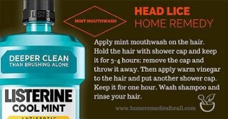 3448bfc24382dba032dfbd2973fc4dd9 - How To Get Rid Of Head Lice With Baby Oil