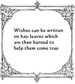 A Magical wish....