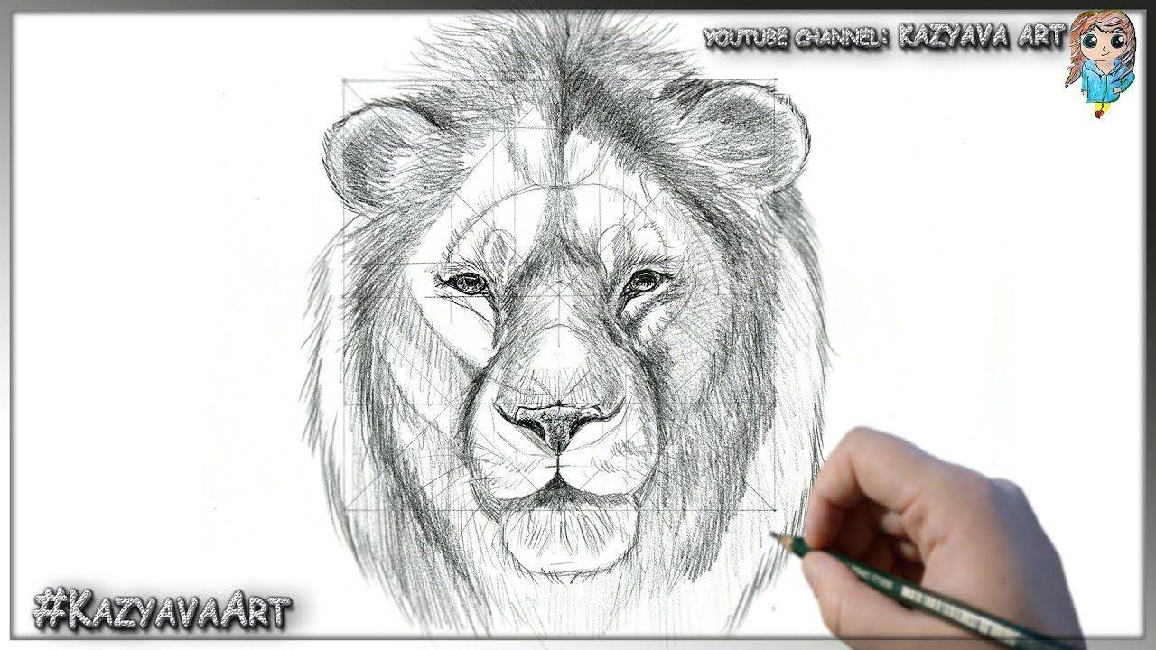 Как нарисовать Симбу взрослого карандашом шаг за шагом. Король лев 2019 год