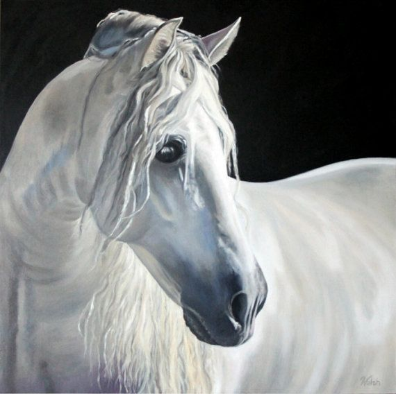 Original Oil Painting White Horse On Black Background Quot