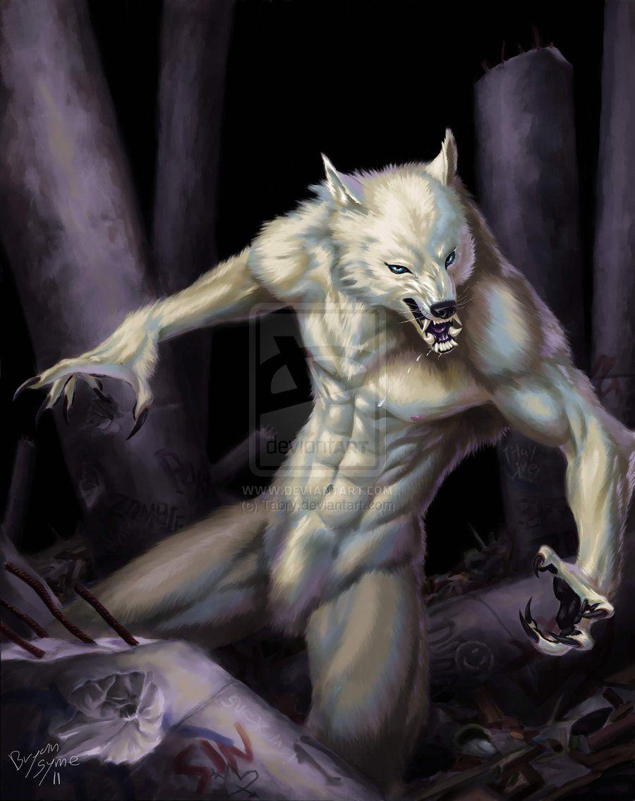 Gwynbleid, El Lobo Blanco - Alistar Reep 344cd0aefb9127a090d57add45d5e688