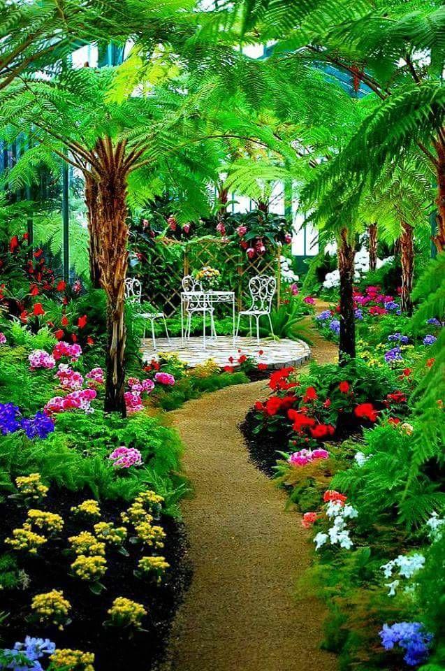 Consejos Para Invernaderos Para Jardin Imagen De Jardín Diseño