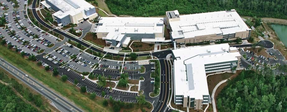 navy federal call center