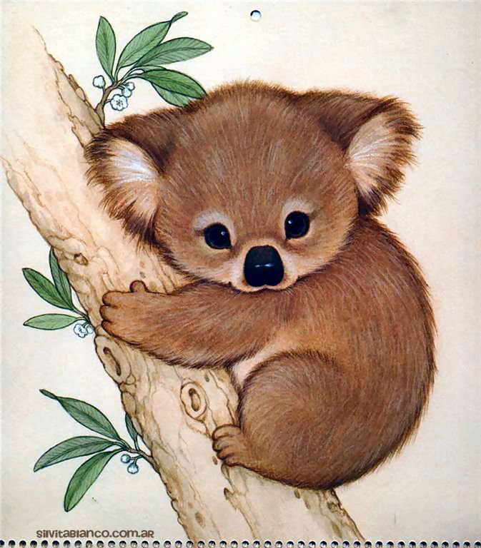 Ruth Morehead Forest Friends Collection Ilustraciones Tarjetas Tarjetas Ilustracion Imagenes Ilustracion Animal Drawings Koala Drawing Cute Animal Drawings