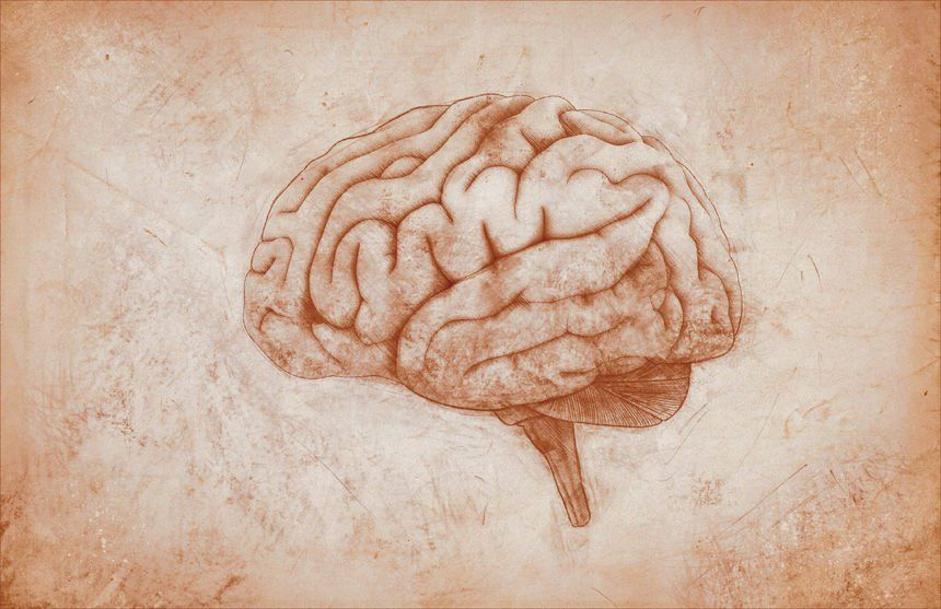 Few people actually know that there are several types of intelligence that describe personalities and the ways in which our brains work.