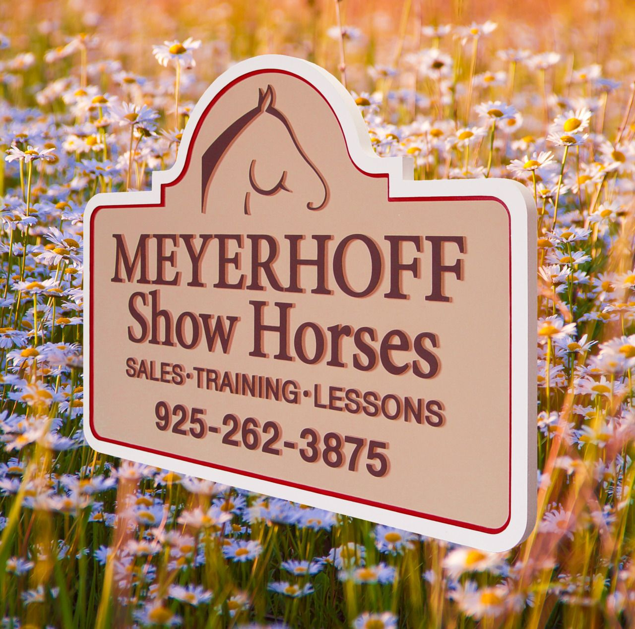Strata Sign Company Meyerhoff Show Horses Commercial Signs