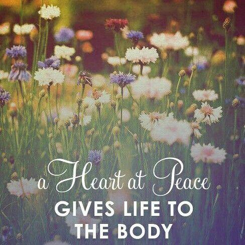 #Quiet #heart inside - www.IlluminousWorld.com #IlluminousWorld #IlluminatingtheworldOneStepataTime #enlightenment #wholehealth #zen #5D #loveunconditional #universal #Love #healthychoices #peace #bodybuilding #fromwithin #mindfulness #meditation #meditate #goals #goodvibes #positivethinking #positivevibes