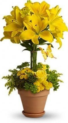 yellow-topiary-arrangement.236.jpg 236×425 pixels I have seen an amazing recreation or inspiration for this but with four lilies up top, oranges and slices were pinned among orange roses (Darker orange tips), orange alstroemerias , (tiger lilies for orange tops.)Casablanca lilies w/limes, white roses, lisianthus, and yellow Lilies for lemons, w/sunflowers, roses, alstroemerias ,lisanthus. Amazing !