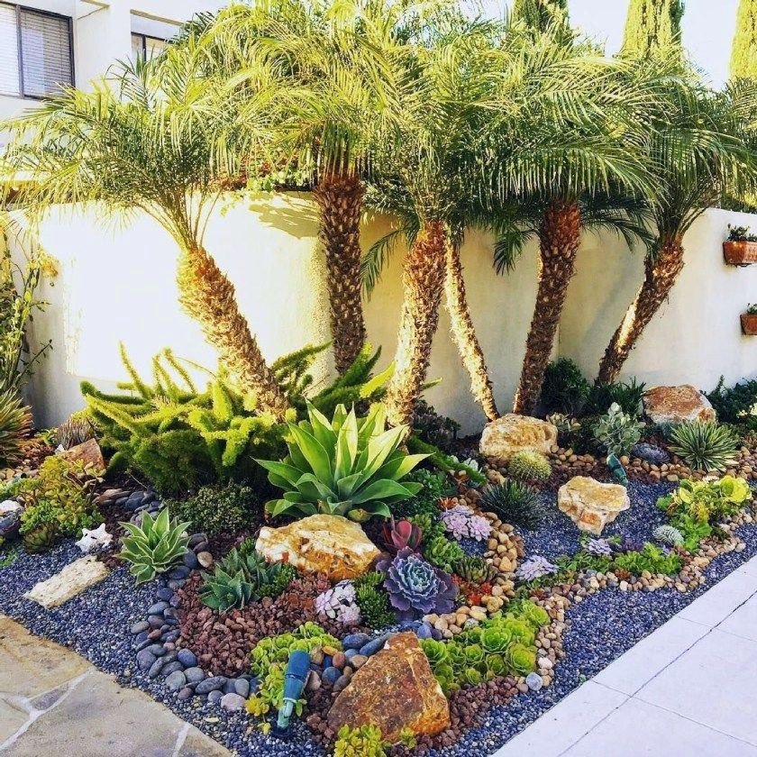 Desert Landscaping Concepts to Save Water as well as