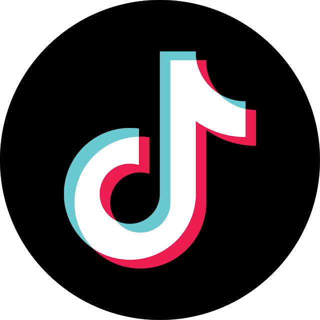 Image result for icon tiktok