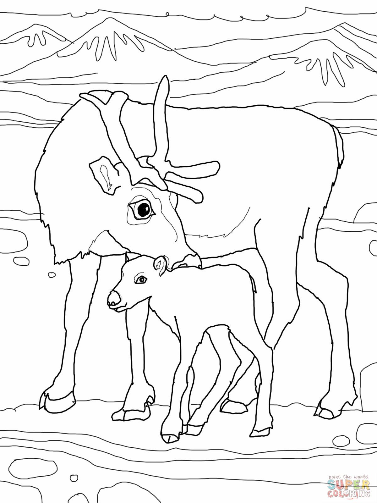 Mother Reindeer With Baby Deer Coloring Picture With