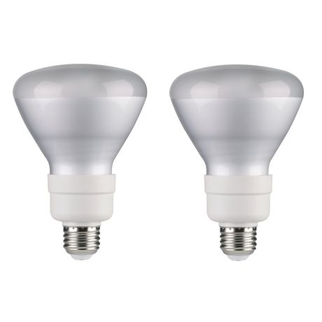 Great Value Compact Fluorescent Light T3 14w R30 Daylight Bulb