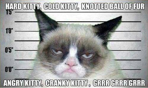 Grumpy Cat Grrrrrr