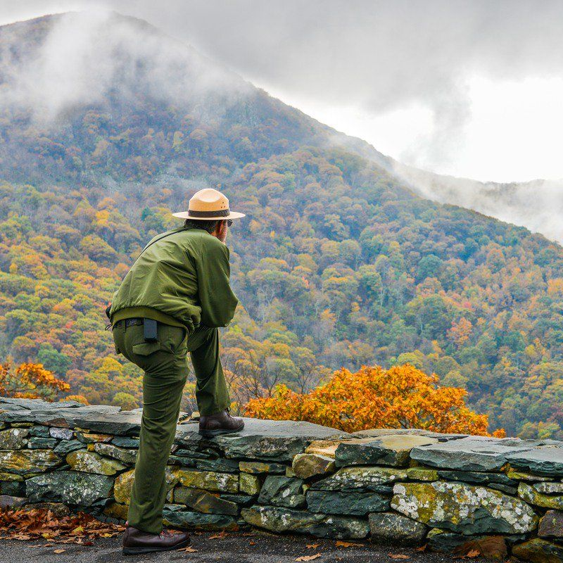 5 Things Park Rangers Wish Visitors Would Stop Doing