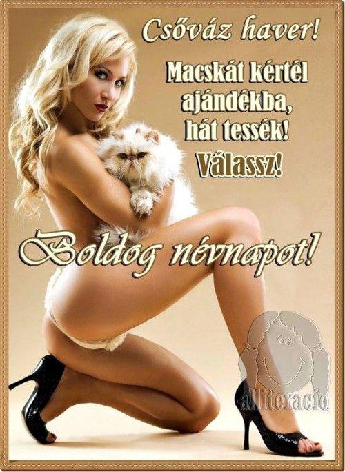 csajos képek férfiaknak névnap, képeslap, pasiknak, férfiaknak, csajos, szexi, macska  csajos képek férfiaknak