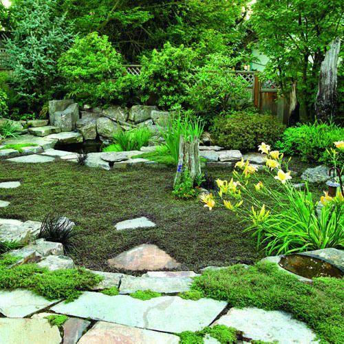 "Sunken Treasure: No-mow ""lawn""! #FoodWritingTips | Garden ... on No Mow Backyard Ideas  id=48980"