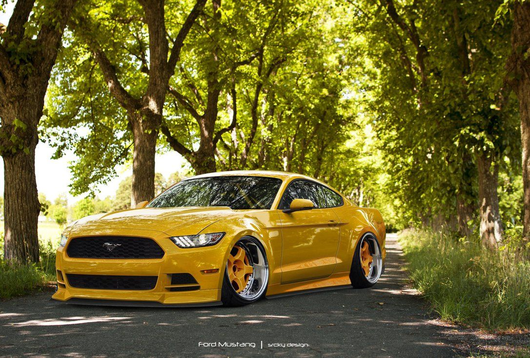 Ford Mustang Stance Ford Mustang Mustang 2009 Ford Mustang