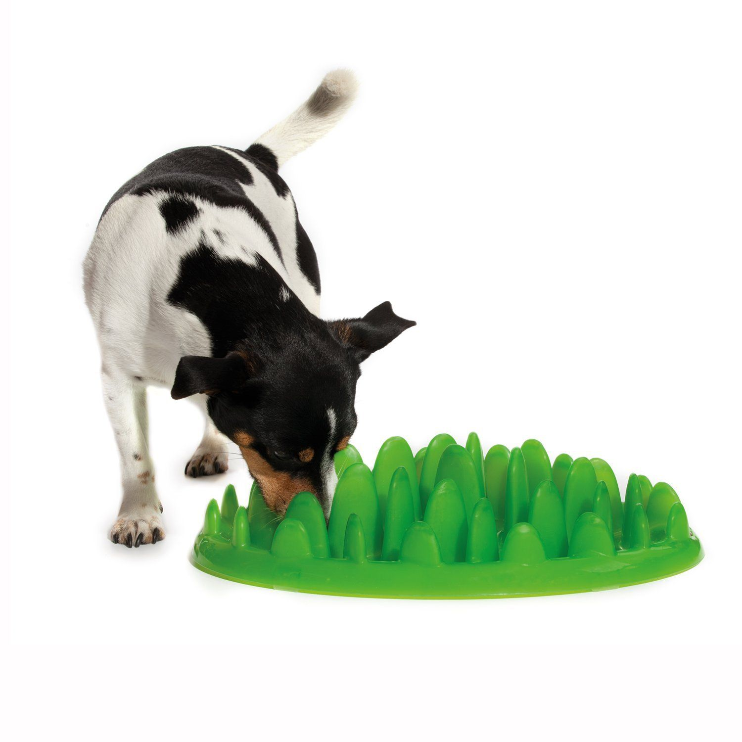 The Company Of Animals Northmate Interactive Feeder Slow Feed