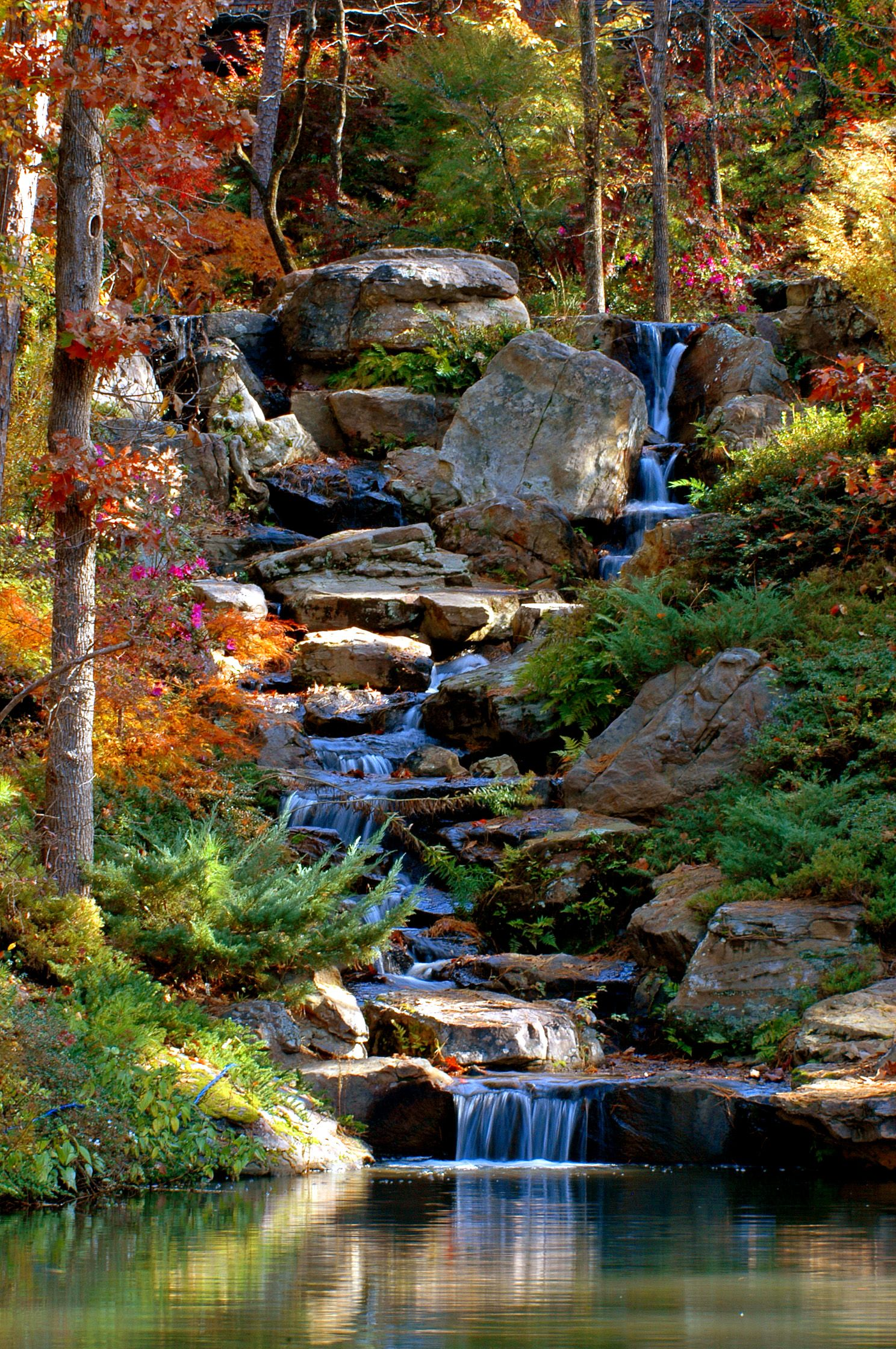Koi pond cascade in fall this is why i want to get for Japanese garden with koi pond