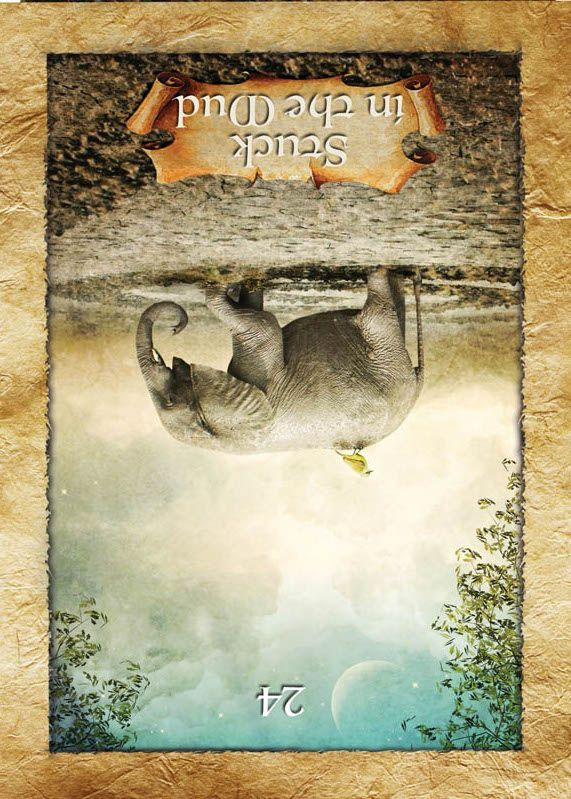 FREE Online Oracle Card APP You And The Universe