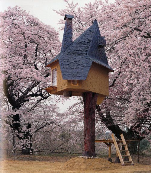 Cherry Tree House Cool Tree Houses Floating Architecture