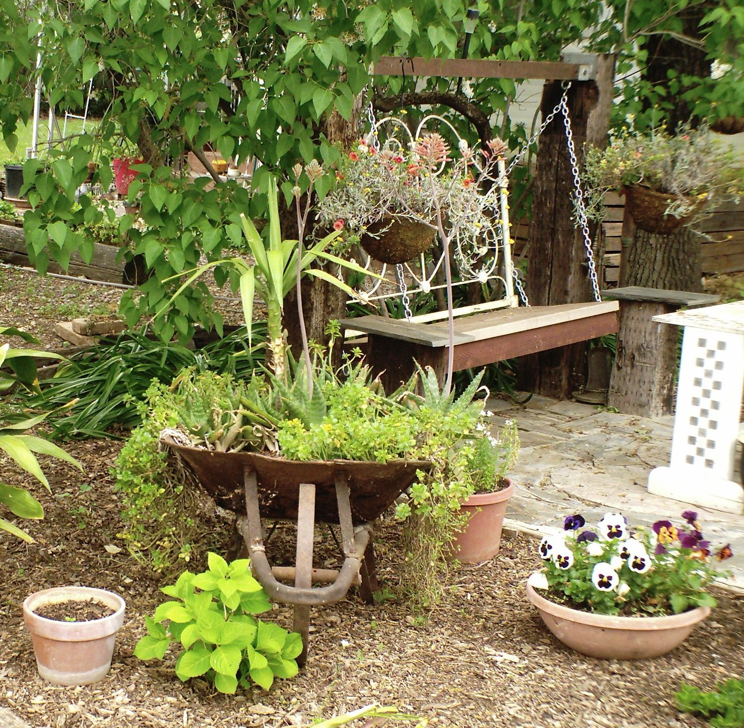 Lots of repurposing going on in this girls garden the swing ud an