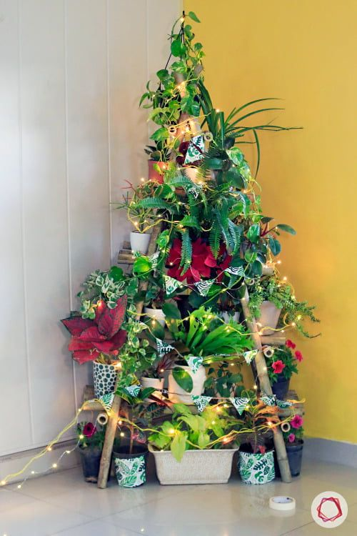 Christmas Tree With Potted Plants? in 2020 | Christmas pots, Diy christmas tree, Christmas tree