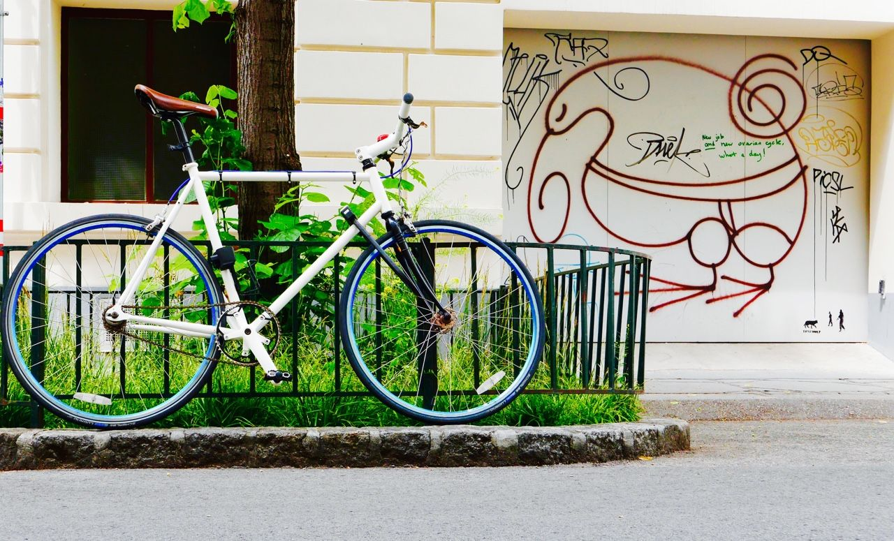 New Ovarian Cycle 062015 Lindengasse Wien Austria My Photographs